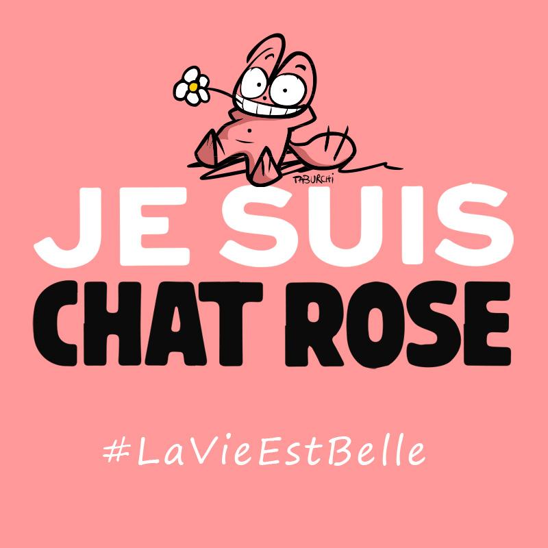 Le Chat Rose soutient les victimes des attentats de janvier 2015, dont ceux de Charlie Hebdo et du supermarché juif à Paris.